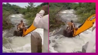 Telangana Cop Risks Life, Rescues Dog Stuck In Bushes After Heavy Rains; Netizens Praise The Brave Official As The Video Goes Viral